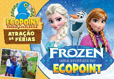 01 Passaporte p/ o Ecopoint + Musical Frozen + Show do Homem Aranha